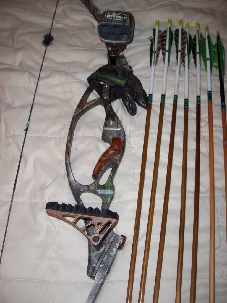 Hoyt gamemaster ii review a recurve bow inspection for Bow fishing games